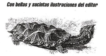 EL PEQUEÑO CEMENTERIO DE LAS EDITORIALES